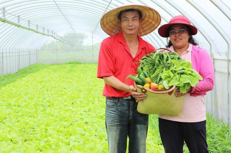 桃園領鮮蔬果禮盒發表上市